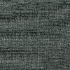 Fancy Grey