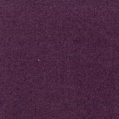 Domara Purple